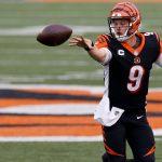 Cincinnati vs Washington NFL Week 11 Picks